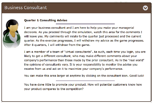 Business Consultant: Online consultant raises issues students to consider. No answers given.